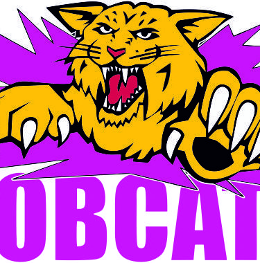 Web shop managed on behalf of the Bobcats