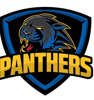 Web shop managed on behalf of the Swindon Panthers